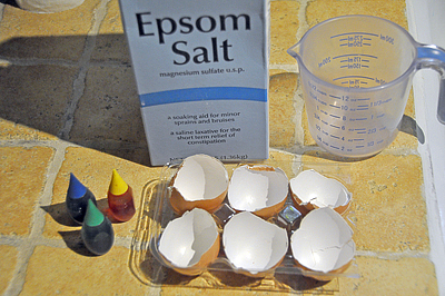Crystal egg geodes science fair project